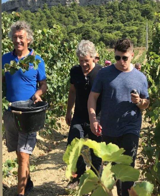 Jon Bon Jovi Vendange en france
